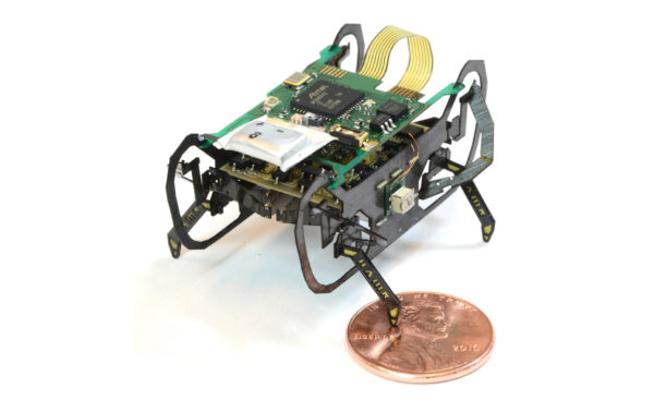 Микроробот Harvard Ambulatory MicroRobot или HAMR-F